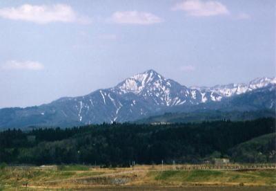春の光兎山